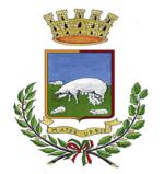 logo_comune2